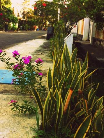 Living, Places