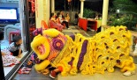Lion dance during Chinese New New Year